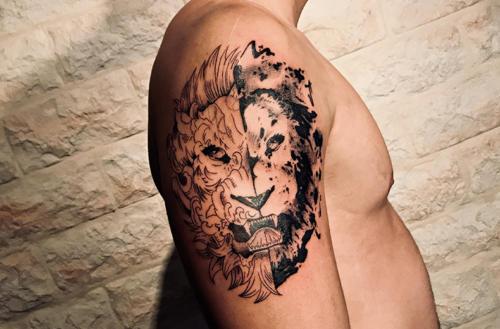 Le lion au deux visages